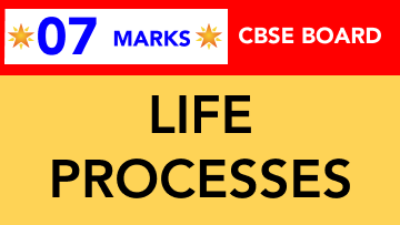 CBSE Board Class 10 LIFE PROCESSES || Weightage and Important Topics