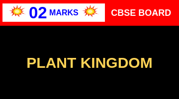 CBSE Board Class 11 PLANT KINGDOM || Weightage and Important Topics