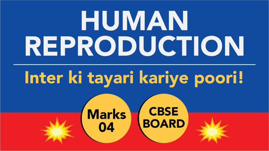 CBSE Board Class 12 HUMAN REPRODUCTION || Weightage and Important Topics