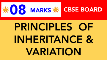 CBSE Board Class 12 PRINCIPLES OF INHERITANCE AND VARIATION    Weightage and Important Topics