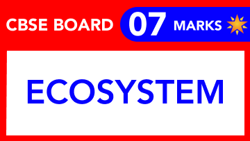 CBSE Board Class 12 ECOSYSTEM || Weightage and Important Topics