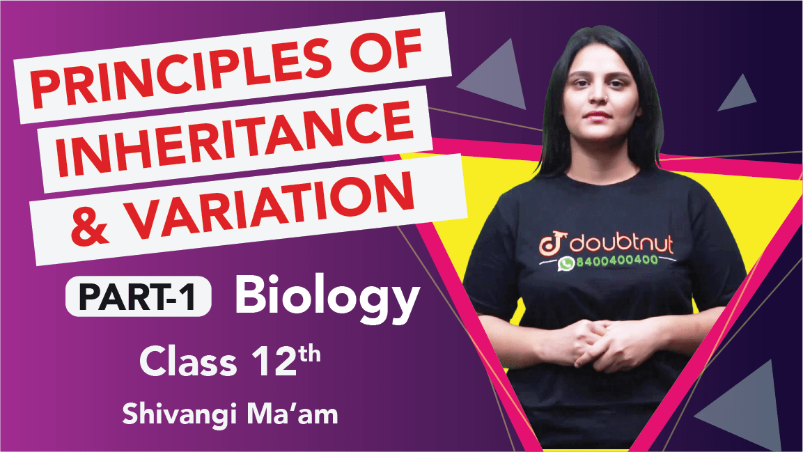Class 12 Biology | Chapter 5 Principles of Inheritance and Variations  | Important Questions | CBSE Boards Revision | Part 1