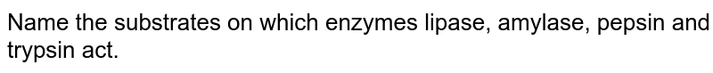 Name the substrates on which enzymes lipase, amylase, pepsin and trypsin act.