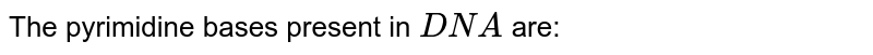 The pyrimidine bases present in `DNA` are: