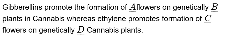 Gibberellins promote the formation of `ul(A)`flowers on genetically `ul(B)` plants in Cannabis whereas ethylene promotes formation of `ul(C)` flowers on genetically `ul(D)` Cannabis plants.