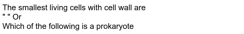 """The smallest living cells with cell wall are <br> """"                         """" Or <br> Which of the following is a prokaryote"""