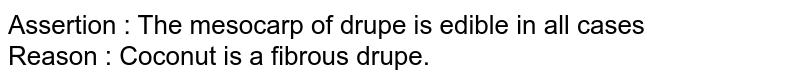 Assertion : The mesocarp of drupe is edible in all cases <br> Reason : Coconut is a fibrous drupe.