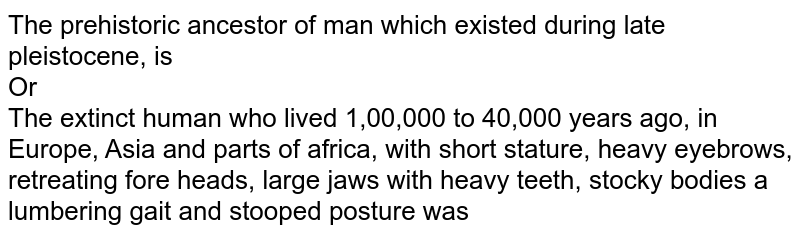 The prehistoric ancestor of man which existed during late pleistocene, is  <br> Or <br> The extinct human who lived 1,00,000 to 40,000 years ago, in Europe, Asia and parts of africa, with short stature, heavy eyebrows, retreating  fore heads, large jaws with heavy teeth, stocky bodies a lumbering gait and stooped posture was