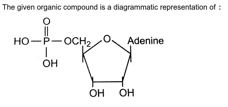 """The given organic compound is a diagrammatic representation of `:` <br> <img src=""""https://d10lpgp6xz60nq.cloudfront.net/physics_images/GRB_OBJ_BIO_IIND_C52_E01_273_Q01.png"""" width=""""80%"""">"""