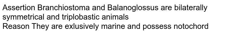Assertion Branchiostoma and Balanoglossus are bilaterally symmetrical and triplobastic animals <br> Reason They are exlusively marine and possess notochord