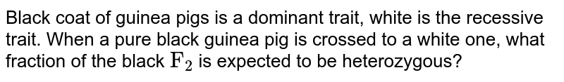 """Black coat of guinea pigs is a dominant trait, white is the recessive trait. When a pure black guinea pig is crossed to a white one, what fraction of the black `""""F""""_(2)`  is expected to be heterozygous?"""