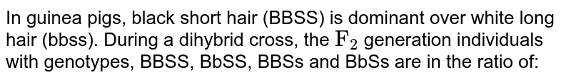 """In guinea pigs, black short hair (BBSS) is dominant over white long hair (bbss). During a dihybrid cross, the `""""F""""_(2)` generation individuals with genotypes, BBSS, BbSS, BBSs and BbSs are in the ratio of:"""