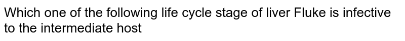 Which one of the following life  cycle  stage  of  liver Fluke  is infective  to the  intermediate host