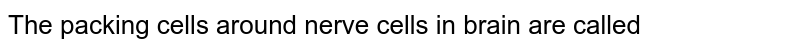 The packing cells around nerve cells in brain are called