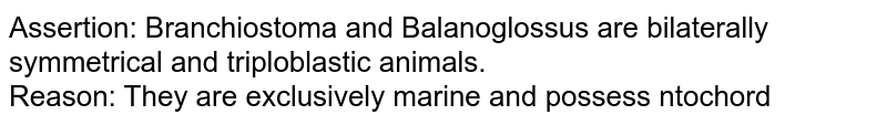 Assertion: Branchiostoma and Balanoglossus are bilaterally symmetrical and triploblastic animals. <br> Reason: They are exclusively marine and possess ntochord