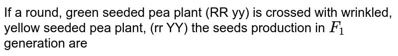 If a round, green seeded pea plant (RR yy) is crossed with wrinkled, yellow seeded pea plant, (rr YY) the seeds production in `F_(1)` generation are