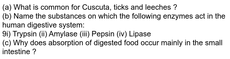 (a) What is common for Cuscuta, ticks and leeches ? <br> (b) Name the substances on which the following enzymes act in the human digestive system: <br> 9i) Trypsin (ii) Amylase (iii) Pepsin (iv) Lipase <br> (c) Why does absorption of digested food occur mainly in the small intestine ?