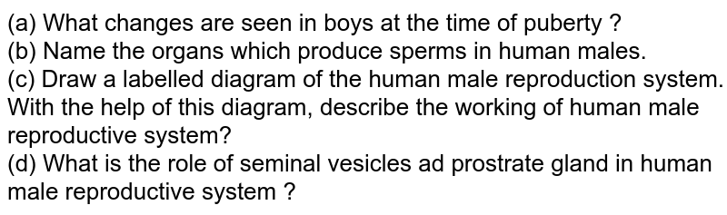 (a) What changes are seen in boys at the time of puberty ? <br> (b) Name the organs which produce sperms in human males. <br> (c) Draw a labelled diagram of the human male reproduction system. With the help of this diagram, describe the working of human male reproductive system? <br> (d) What is the role of seminal vesicles ad prostrate gland in human male reproductive system ?