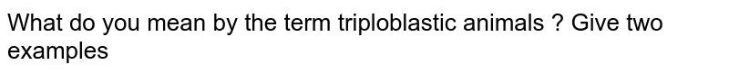 What do you mean by the term triploblastic animals ? Give two examples
