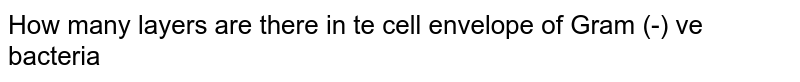 How many layers are there in te cell envelope of Gram (-) ve bacteria
