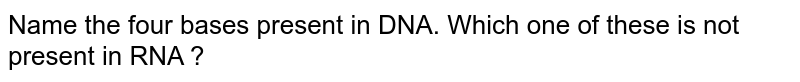 Name the four bases present in DNA. Which one of these is not present in RNA ?