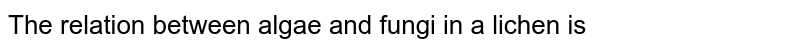 The relation between algae and fungi in a lichen is