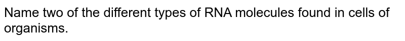 Name two of the different types of RNA molecules found in cells of organisms.