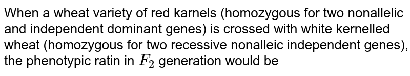 If a wheat variety of red kernels is crossed with white-kernelled wheat, what would be its genotypic ratio? (Note: it is a polygenic trait controlled by 2 pairs of polygenes).