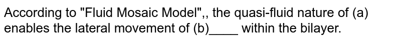 """According to """"Fluid Mosaic Model"""",, the quasi-fluid nature of (a) enables the lateral movement of (b)____ within the bilayer."""