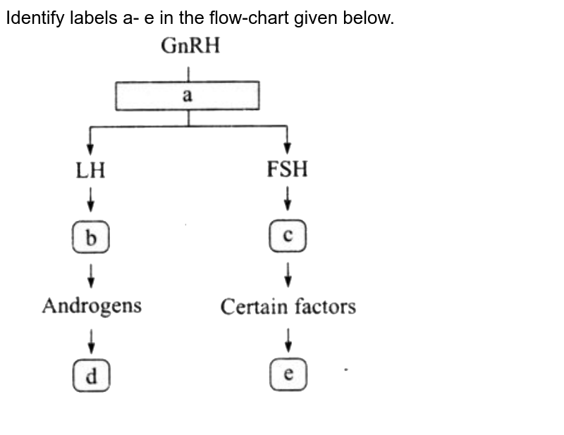 """Identify labels a- e in the flow-chart given below. <br> <img src=""""https://d10lpgp6xz60nq.cloudfront.net/physics_images/NTA_NEET_SET_113_E03_085_Q01.png"""" width=""""80%"""">"""
