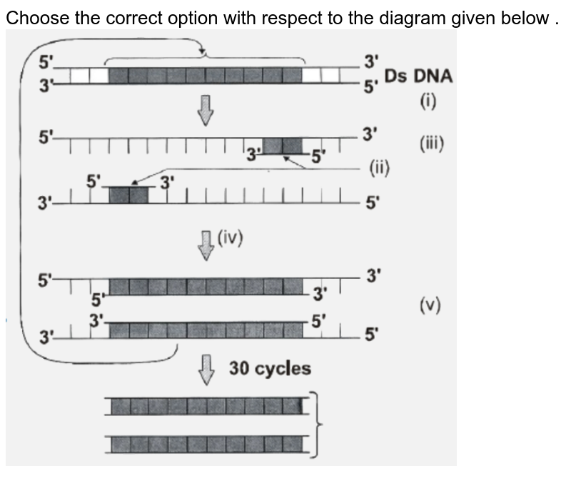 """Choose the correct option with respect to the diagram given below . <br> <img src=""""https://d10lpgp6xz60nq.cloudfront.net/physics_images/NTA_NEET_SET_115_E03_045_Q01.png"""" width=""""80%"""">"""