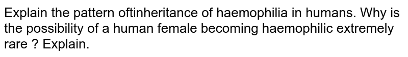 Explain the pattern oftinheritance of haemophilia in humans. Why is the possibility of a human female becoming haemophilic extremely rare ? Explain.