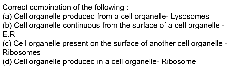 Correct combination of the following : <br> (a) Cell organelle produced from a cell organelle- Lysosomes <br> (b) Cell organelle continuous from the surface of a cell organelle - E.R <br> (c) Cell organelle present on the surface of another cell organelle - Ribosomes <br> (d) Cell organelle produced in a cell organelle- Ribosome
