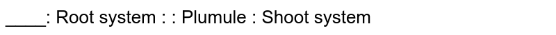____: Root system : : Plumule : Shoot system
