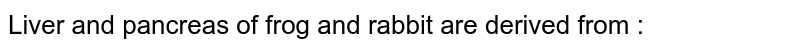 Liver and pancreas of frog and rabbit are derived from :
