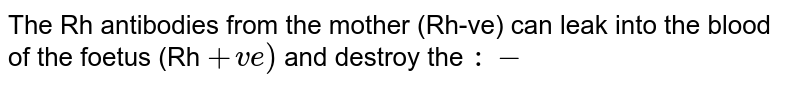 The Rh antibodies from the mother (Rh-ve) can leak into the blood of the foetus (Rh `+ve)` and destroy the `:-`