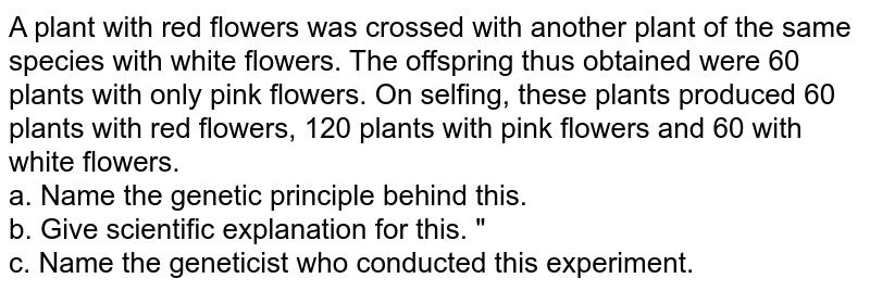 """A plant with red flowers was crossed with another plant of the same species with white flowers. The offspring thus obtained were 60 plants with only pink flowers. On selfing, these plants produced 60 plants with red flowers, 120 plants with pink flowers and 60 with white flowers. <br> a. Name the genetic principle behind this.  <br>  b. Give scientific explanation for this. """"  <br> c. Name the geneticist who conducted this experiment."""
