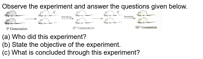 """Observe the experiment and answer the questions given below. <br> <img src=""""https://d10lpgp6xz60nq.cloudfront.net/physics_images/FM_BIO_BOT_XII_SP_HOTS_E01_012_Q01.png"""" width=""""80%"""">  <br> (a) Who did this experiment? <br> (b) State the objective of the experiment. <br> (c) What is concluded through this experiment?"""