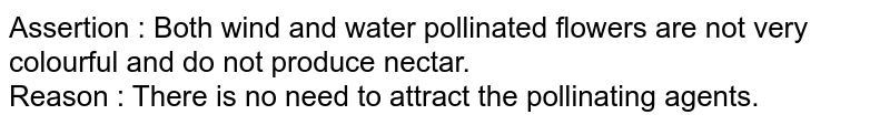 Assertion : Both wind and water pollinated flowers are not very colourful and do not produce nectar. <br> Reason : There is no need to attract the pollinating agents.