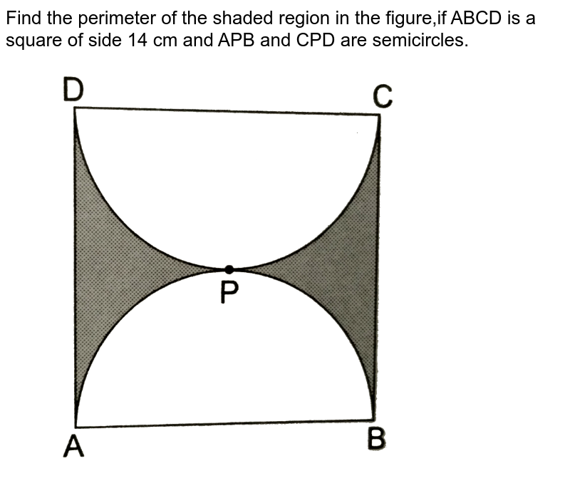 """Find the perimeter of the shaded region in the figure,if ABCD is a square of side 14 cm and APB and CPD are semicircles. <br> <img src=""""https://d10lpgp6xz60nq.cloudfront.net/physics_images/RSA_MATH_X_C16_E02_035_Q01.png"""" width=""""80%"""">"""