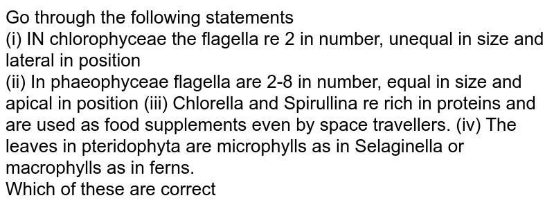 Go through the following statements <br> (i) IN chlorophyceae the flagella re 2 in number, unequal in size and lateral in position <br> (ii) In phaeophyceae flagella are 2-8 in number, equal in size and apical in position (iii) Chlorella and Spirullina re rich in proteins and are used as food supplements even by space travellers. (iv) The leaves in pteridophyta are microphylls as in Selaginella or macrophylls as in ferns. <br> Which of these are correct