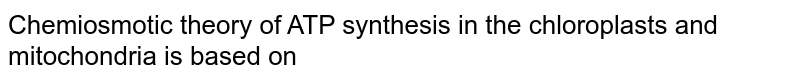 Chemiosmotic theory of ATP synthesis in the chloroplasts and mitochondria is based on