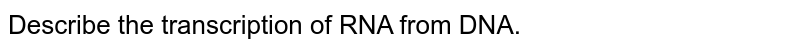 Describe the transcription of RNA from DNA.