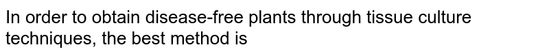 In order to obtain disease-free plants through tissue culture techniques, the best method is