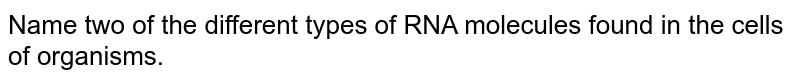 Name two of the different types of RNA molecules found in the cells of organisms.