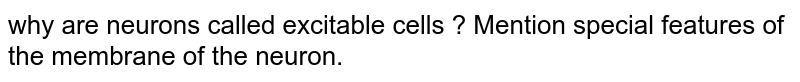 why are neurons called  excitable  cells  ? Mention  special  features of the  membrane  of the  neuron.
