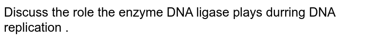 Discuss  the role  the  enzyme  DNA  ligase  plays durring  DNA replication .