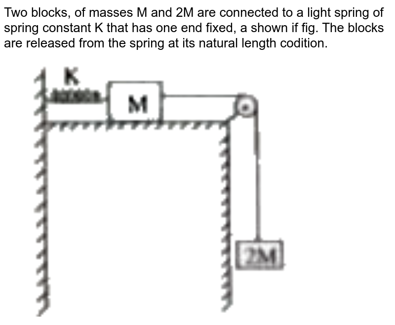 """Two blocks, of masses M and 2M are connected to a light spring of spring constant K that has one end fixed, a shown if fig. The blocks are released from the spring at its natural length codition. <br> <img src=""""https://doubtnut-static.s.llnwi.net/static/physics_images/AKS_TRG_AO_PHY_XI_V01_A_C08_E02_097_Q01.png"""" width=""""80%"""">"""