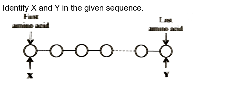 """Identify X and Y in the given sequence. <br> <img src=""""https://d10lpgp6xz60nq.cloudfront.net/physics_images/NCERT_FING_BIO_OBJ_XI_BM_C09_E01_058_Q01.png"""" width=""""80%"""">"""