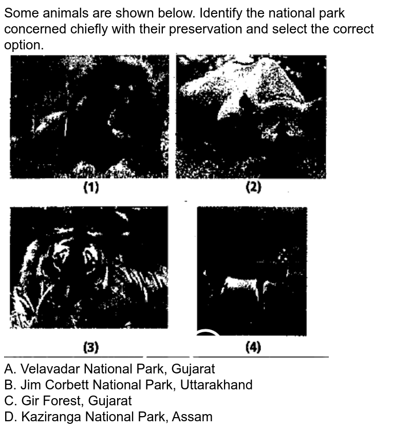 """Some animals are shown below. Identify the national park concerned chiefly with their preservation and select the correct option. <br> <img src=""""https://d10lpgp6xz60nq.cloudfront.net/physics_images/NCERT_FING_BIO_OBJ_XII_BC_C15_E01_104_Q01.png"""" width=""""80%""""> <br> A. Velavadar National Park, Gujarat <br> B. Jim Corbett National Park, Uttarakhand <br> C. Gir Forest, Gujarat <br> D. Kaziranga National Park, Assam"""